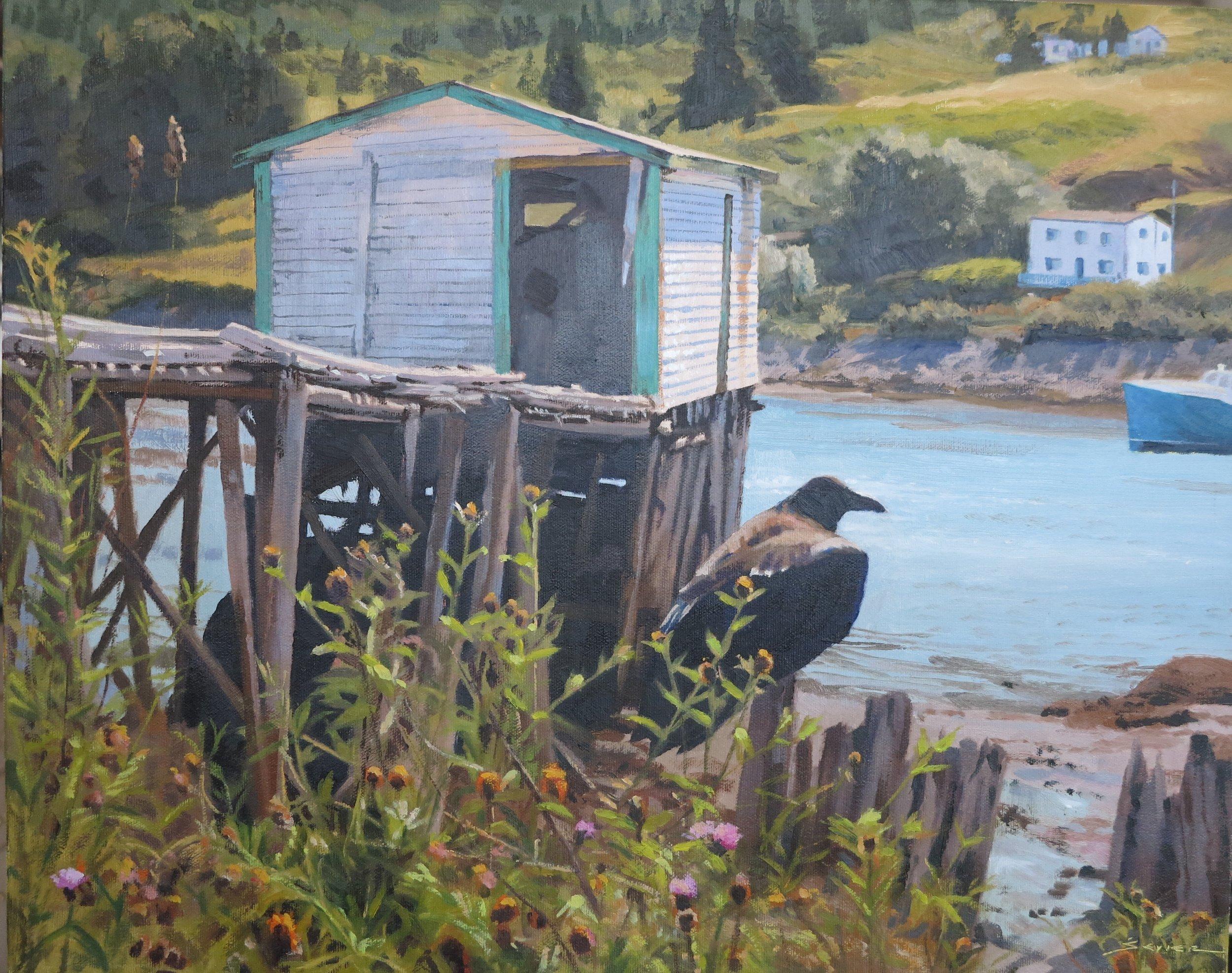 South Brigus Raven, 16 x 20, oil