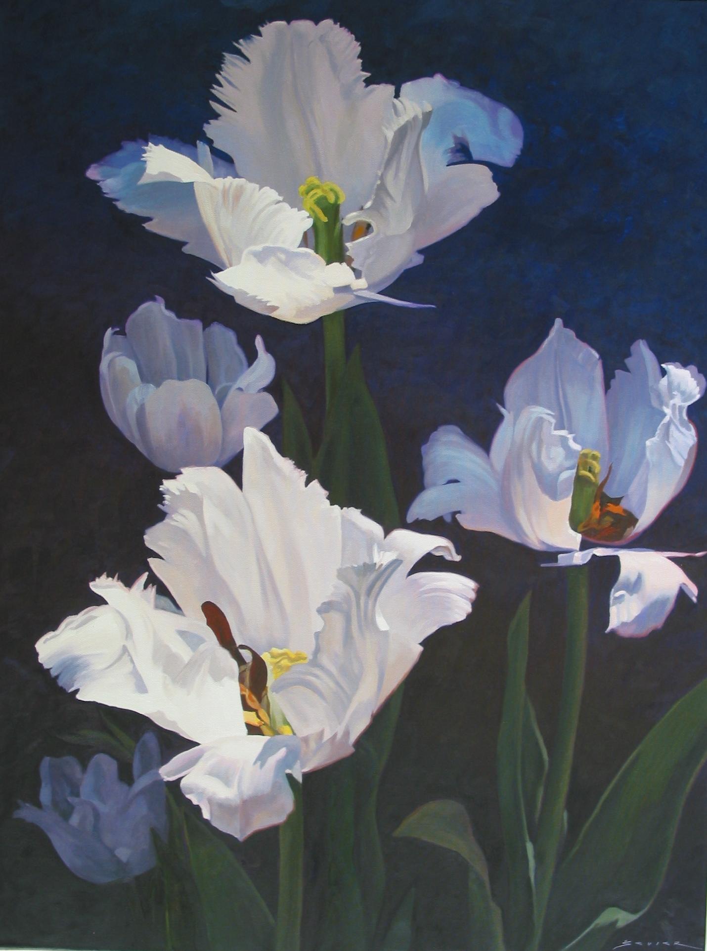 White Tulips, 40 x 30, oil