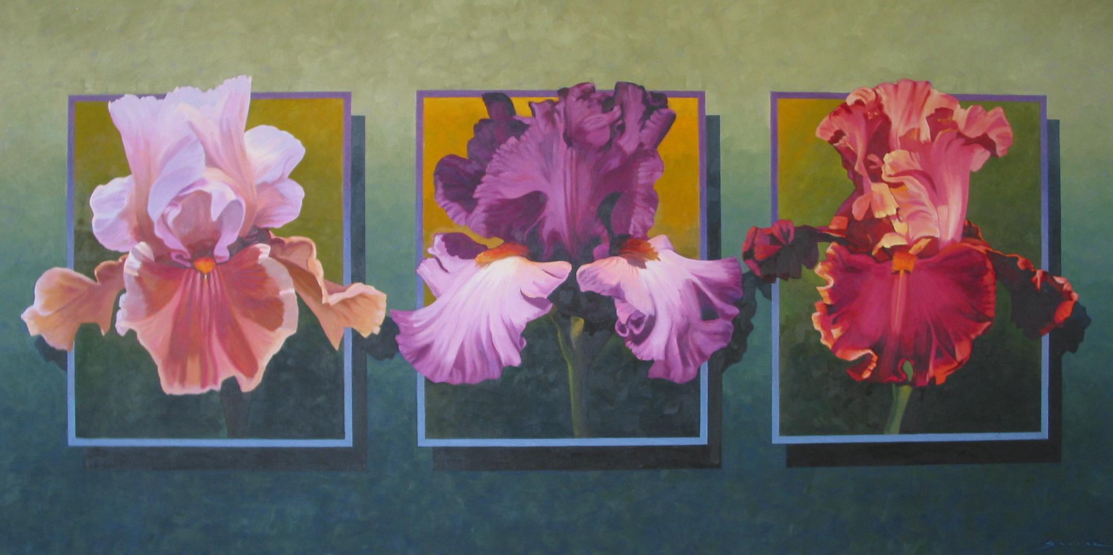 Three Irises on Blue,  30 x 60, oil