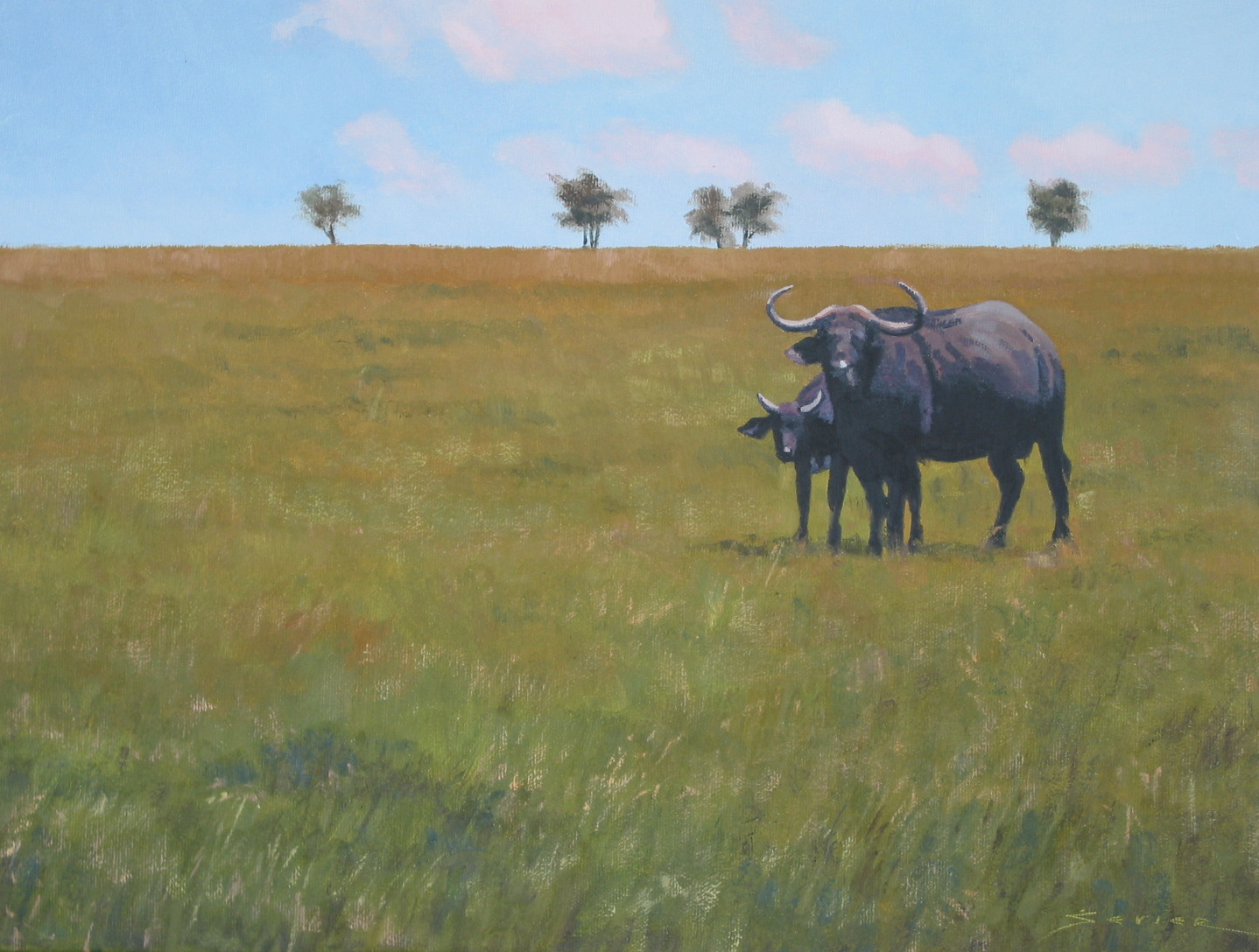 Cape Buffalo/Kenya, 12 x 16, oil