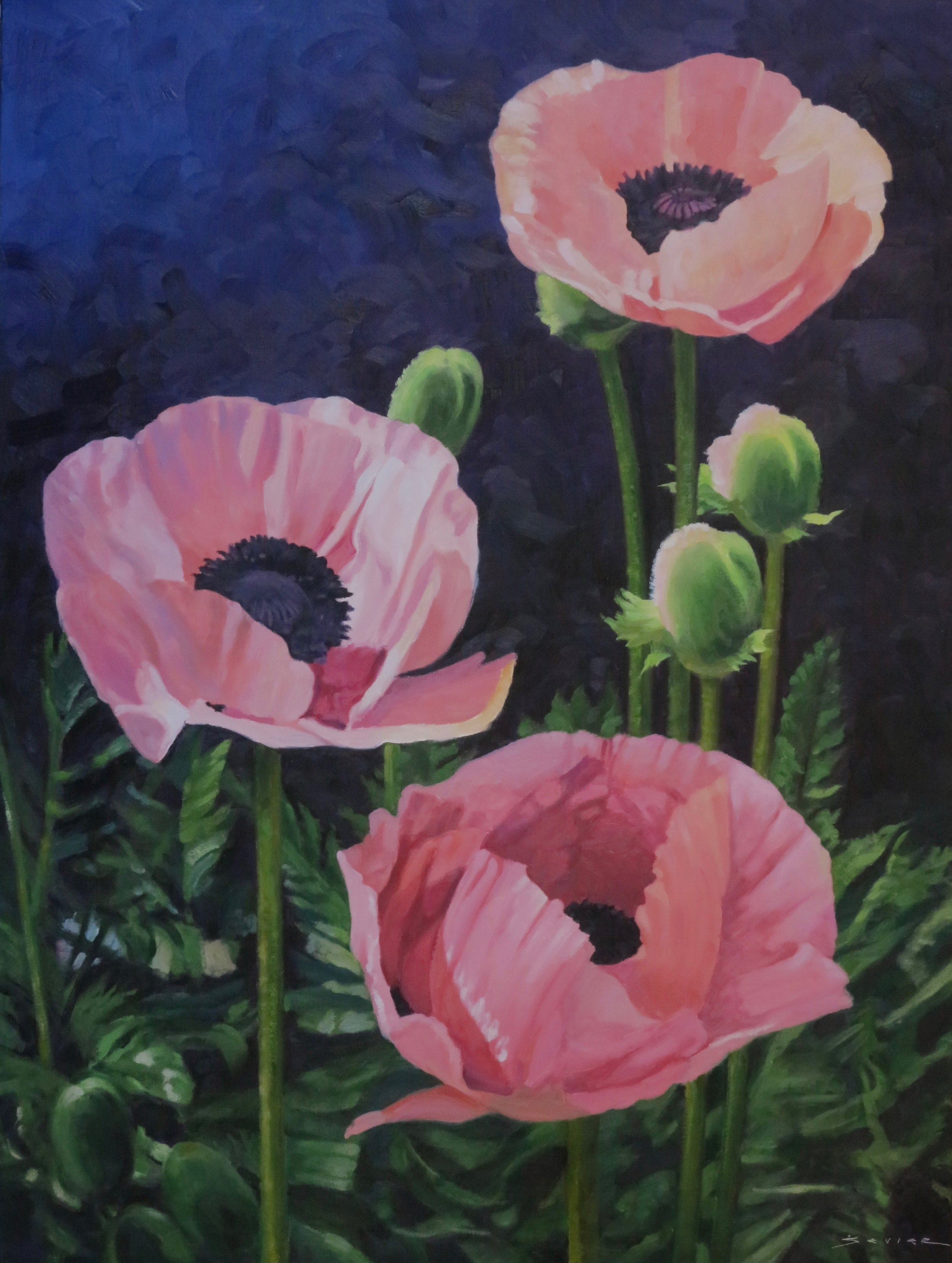 "3 Pink Poppies  40"" x 30""  oil"