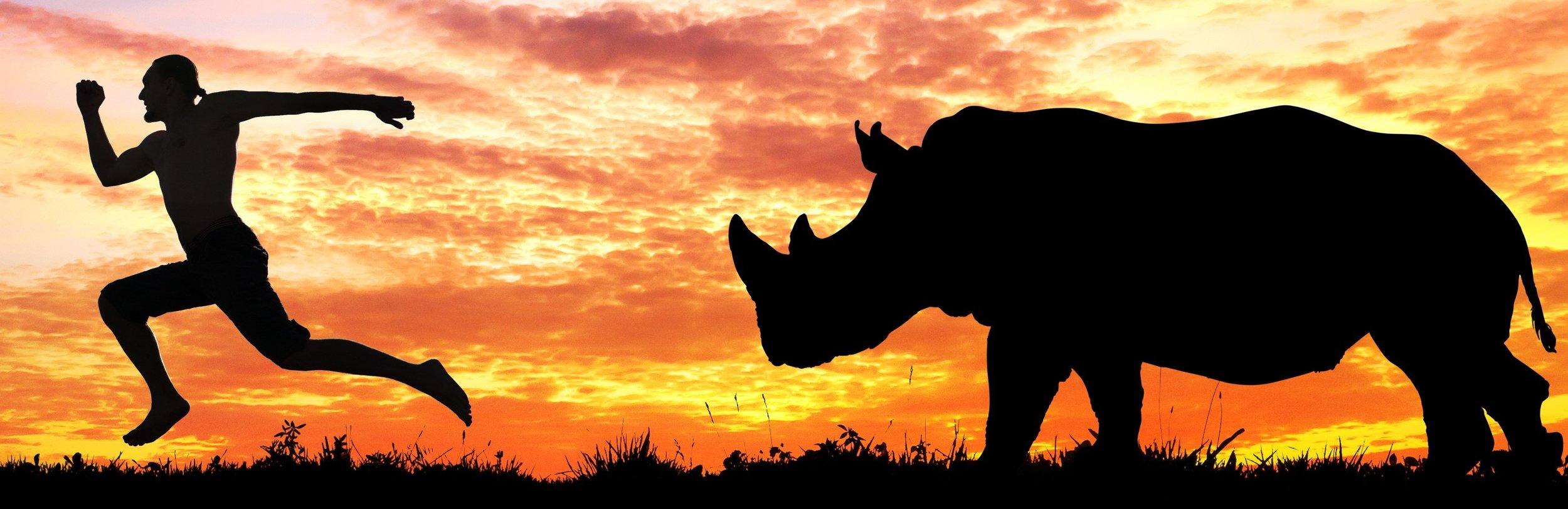 Man running from rhino cropped.jpg