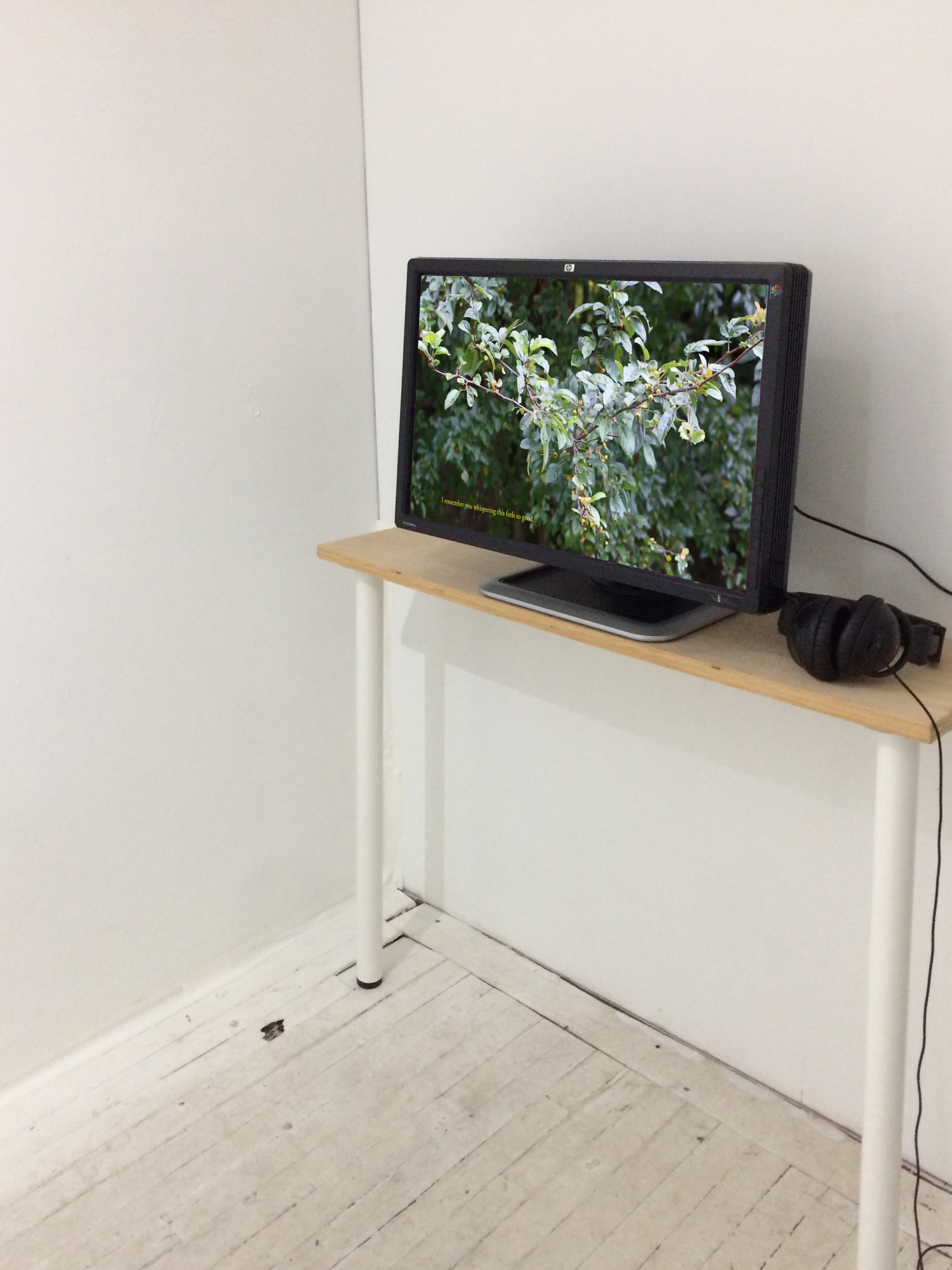 Installation view of Rindon Johnson's  re: hello from the other side  (2017). Image courtesy of Open Projects.