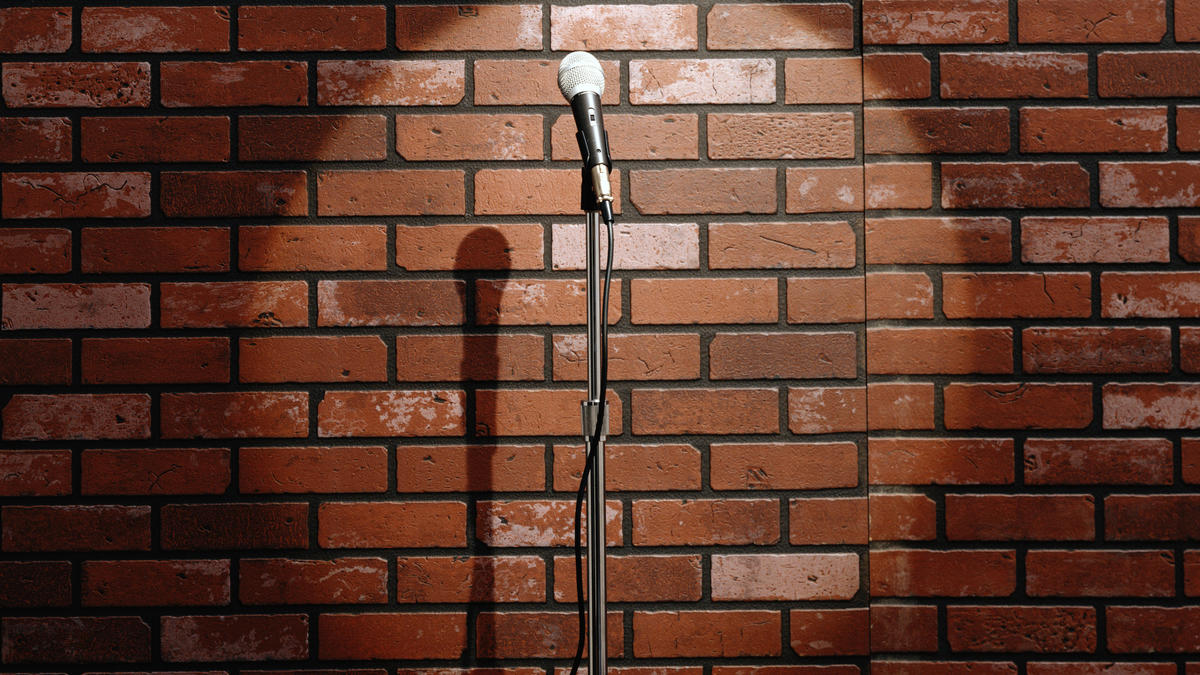 """The 12th result from a Google Image Search for """"brick wall mic"""" on Thursday, July 13th, 2017."""