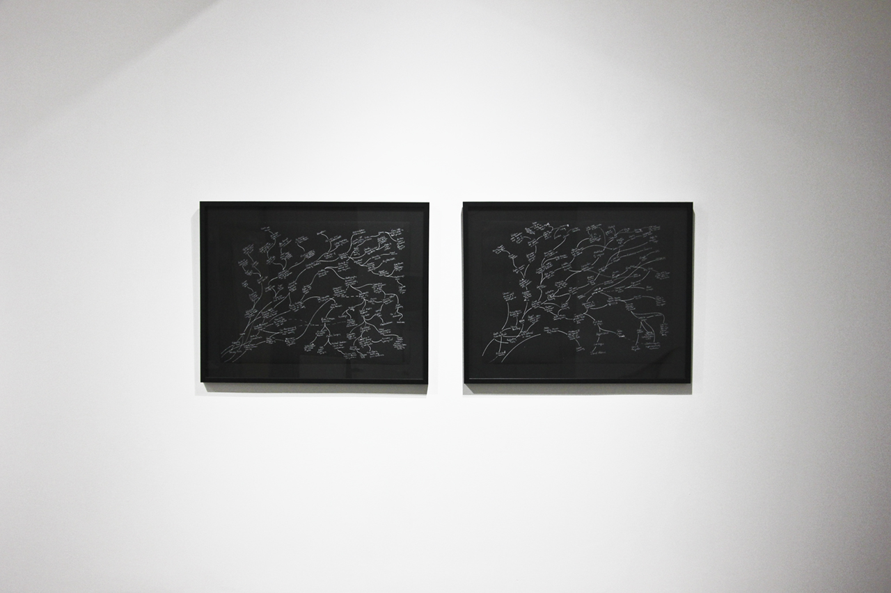 """Beth Campbell's diptych   future past (mirror-psychology)   (2017), white ink on Stonehenge paper,30"""" x 22.25"""" each,from the exhibition  """"Replacing Place,""""  curated by MK Guth, currently on view at Anytime Dept. in Cincinnati, OH"""