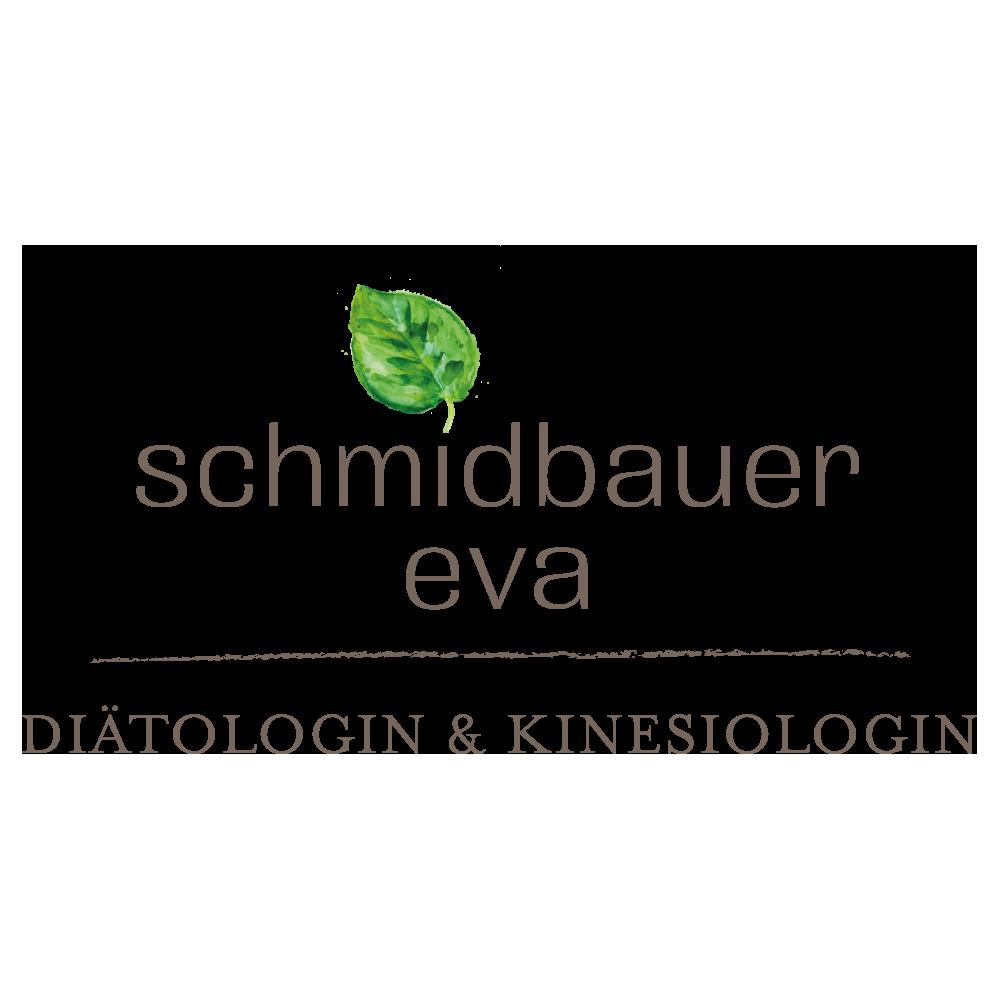 logo-schmidbauer.png