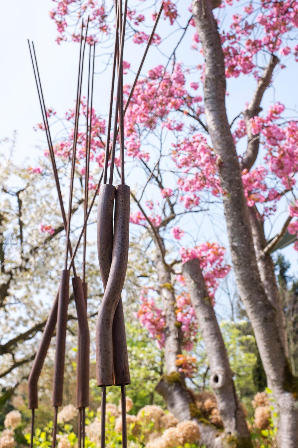 spring_LRF3299_web.jpg