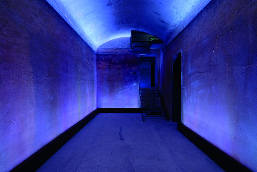 Wasserreservoir_violett.jpg