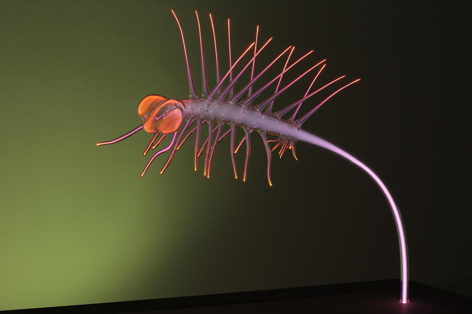 Walde-Martin-Hallucigenia-OMEN-2013-3-web.jpg