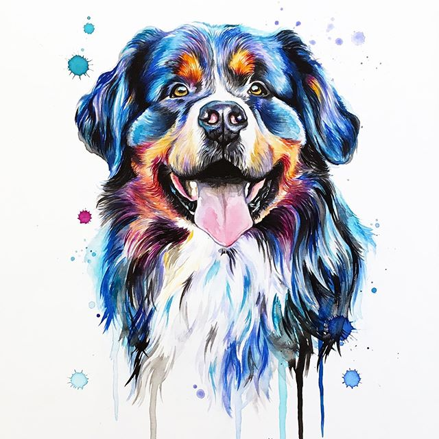 Almost been a year since I lost my Berner 😭 can't believe it. But I could paint Berners all day! Love how this one turned out. Also, The owner told me she's getting a tattoo of this painting 🤩 I can't wait to freaking see it!!!💙🧡💛 . . . . . . . . . . . . #LindsayMichelleART #BerneseMountainDog #petportrait #memorialpainting #petpainting #dogpainting #dogart #homedecor #commissioned #custom #animalpainting #houstonartist #animalart #animalartwork #art #artist #artwork #watercolor #ink #instaart #instaartoftheday #artcollective #artistofinstagram #worldofartists #arthomepage #dailyarts #artwork_in_studio #artfeature