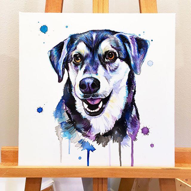 One of my favorite pups 💙 . . . . . . . . . . . . #LindsayMichelleART #dog #gift #present #surprise #husky #lab #custom #dogart #dogpainting #animalpainting #houstonartist #animalart #animalartwork #art #artist #artwork #watercolor #ink #instaart #instaartoftheday #artcollective #artistofinstagram #worldofartists #arthomepage #dailyarts #artwork_in_studio #artfeature