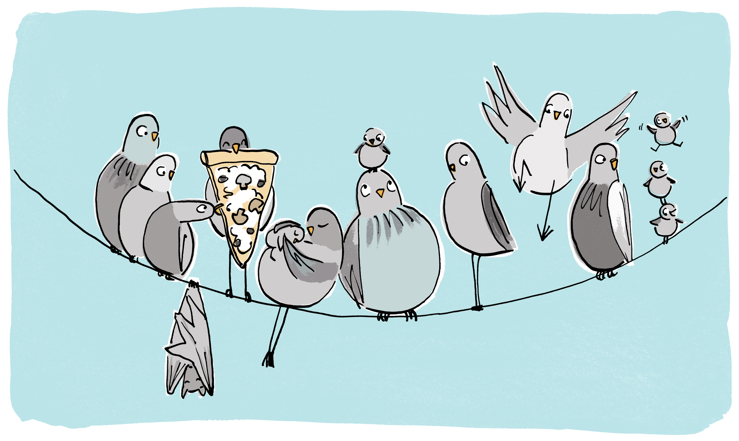 birds-wire2.png