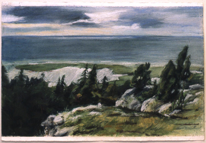 Brucebo Naturreservat, 1981