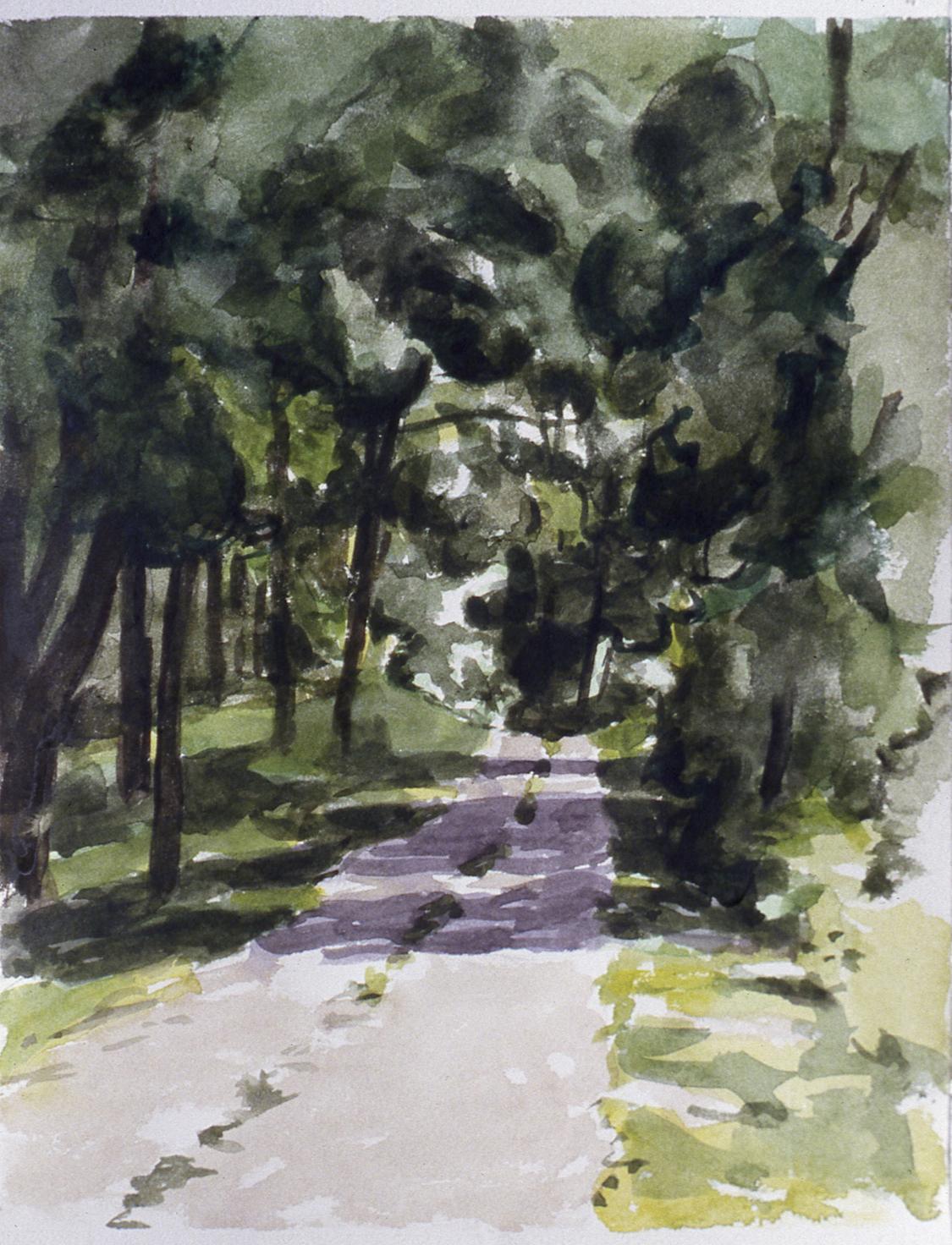 Route sous les arbres, 1981