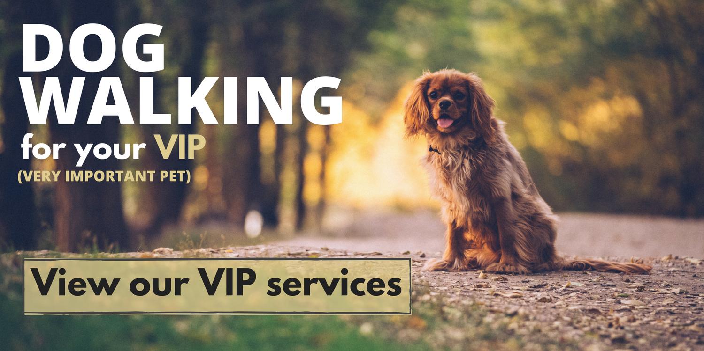 VIP Dog Walking