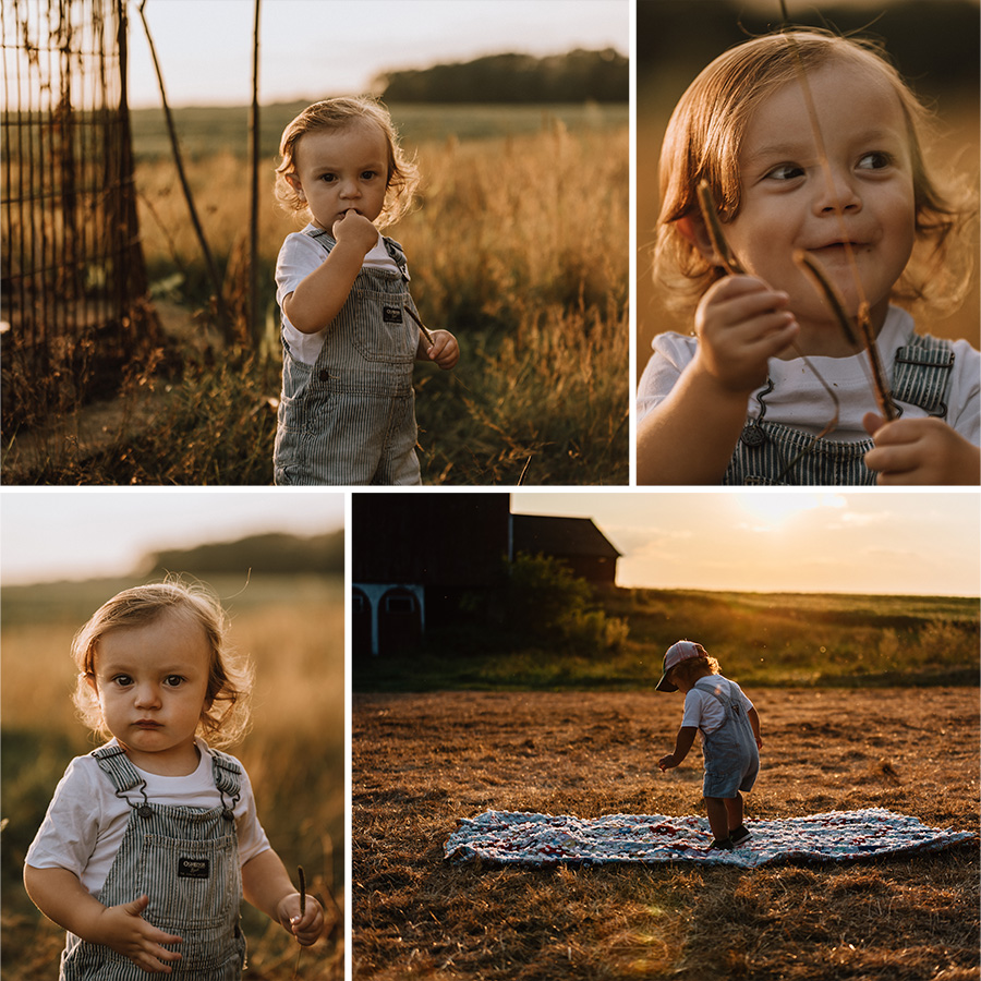 Golden Sunset Farm Session | Henrik 18 Months [Terry Farms Photography}