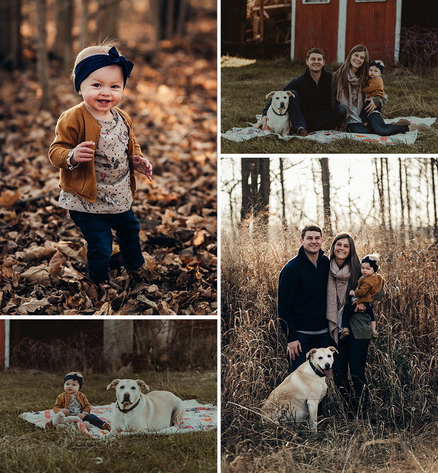 Rustic, country sunset Michigan family session, golden light [Terry Farms Photography]