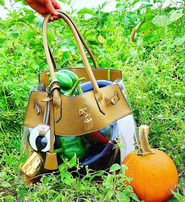 Bag by  DE-VESI   All photos were taken at  Schmitt's Family farm in Melville, NY.