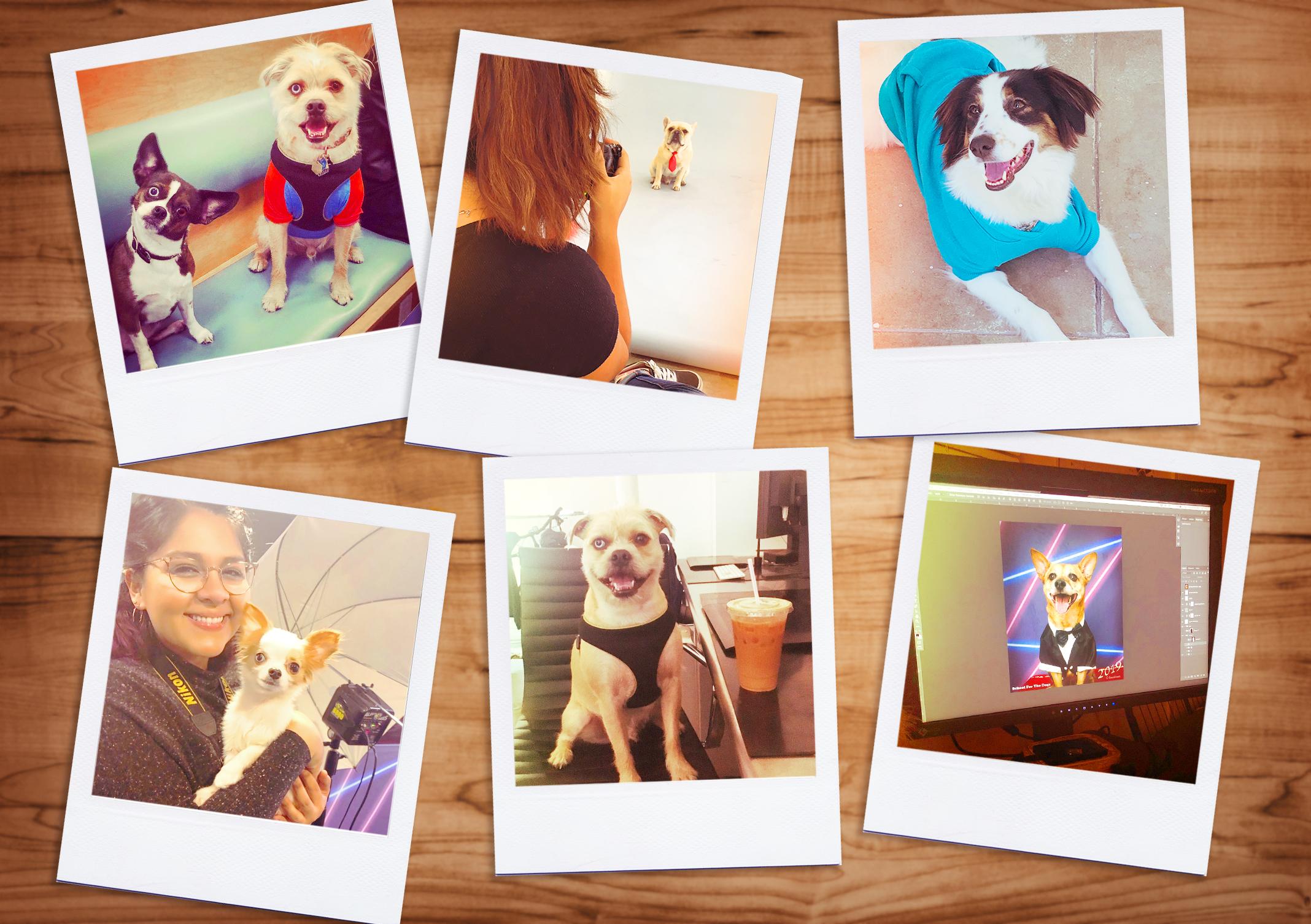 Polaroid-wallpaper-12.jpg