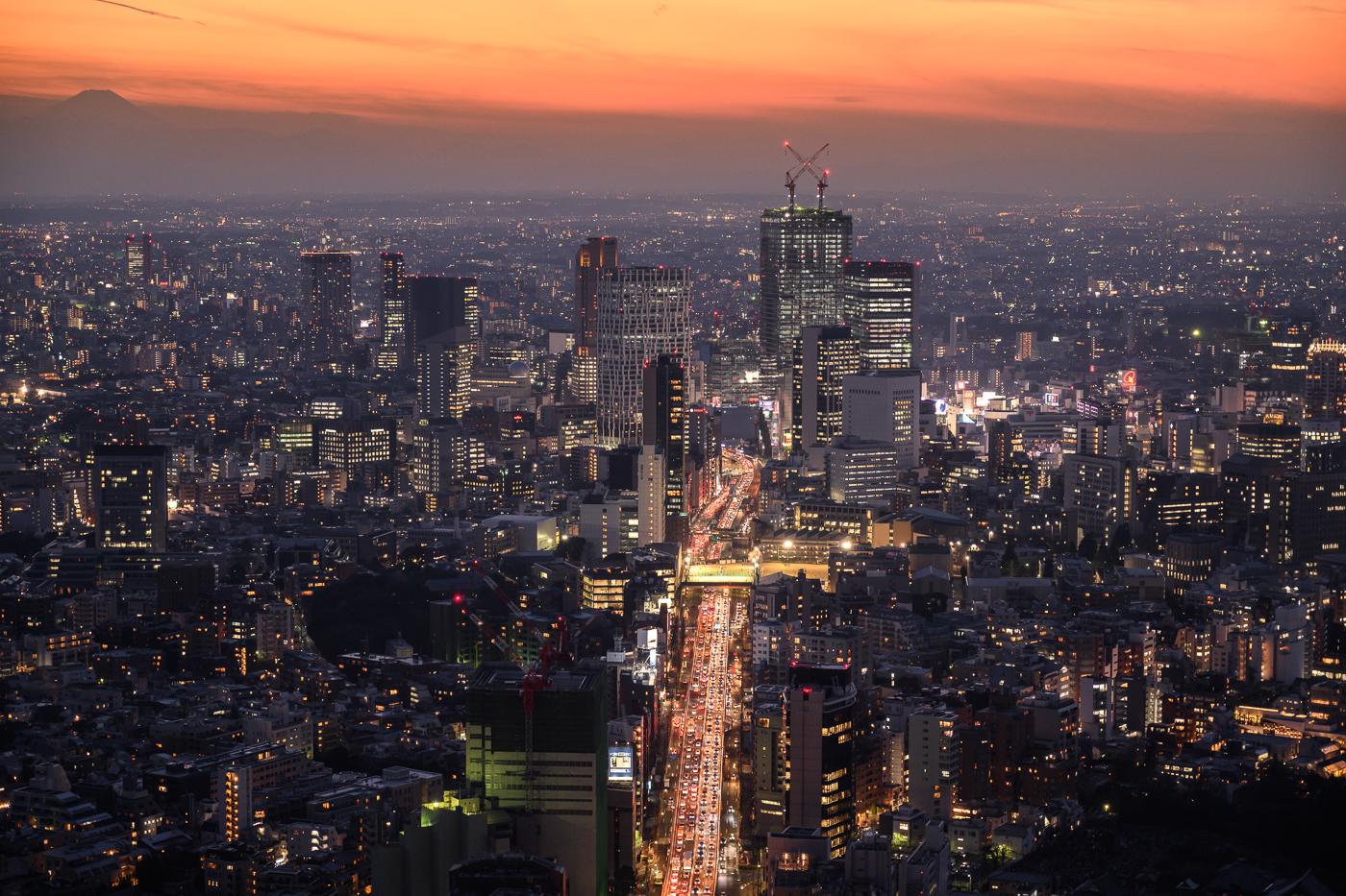 Shinjuku from Roppongi Hills