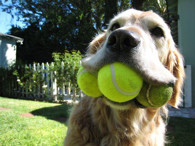 3-balls