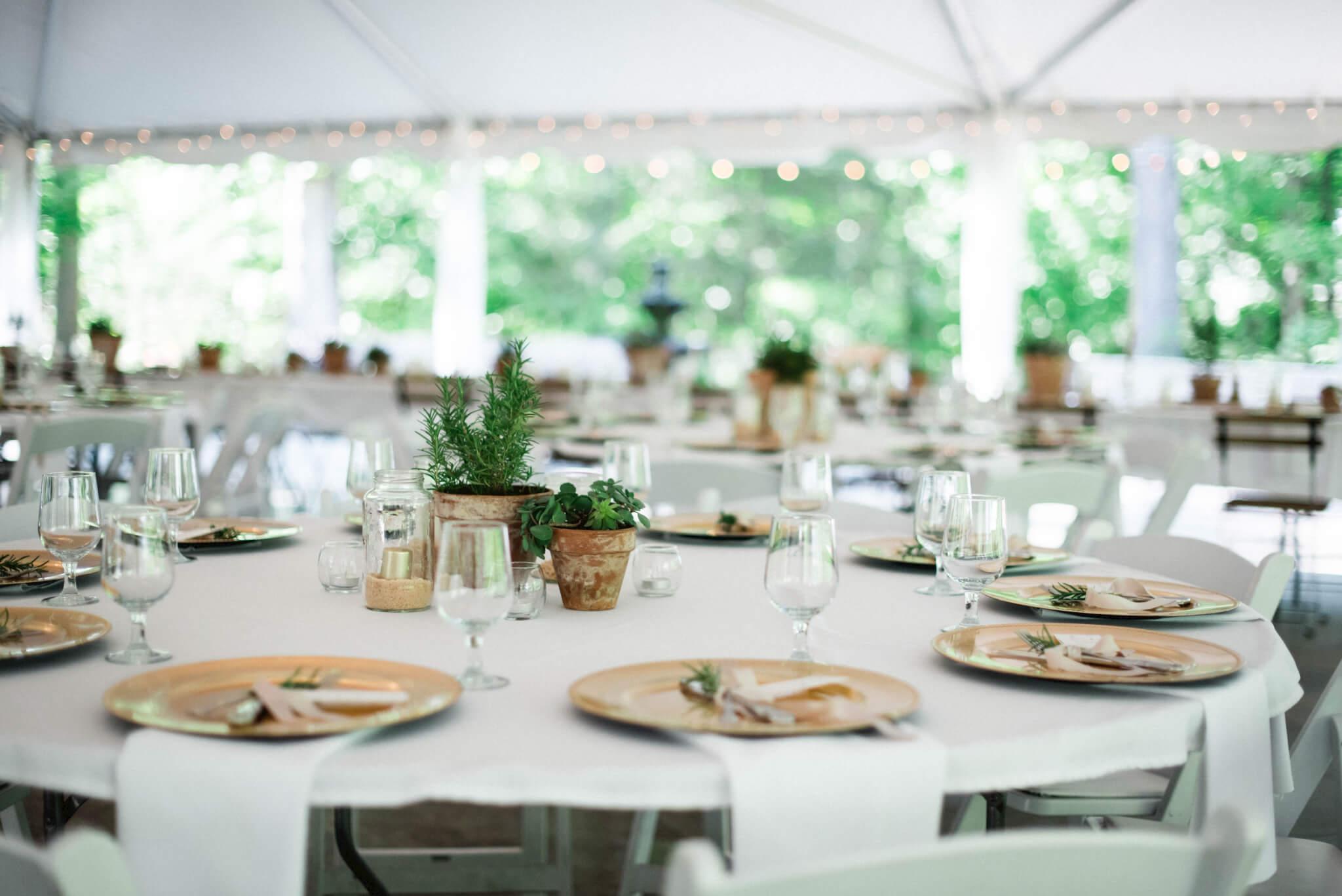 Glackin-Wedding-478.jpg