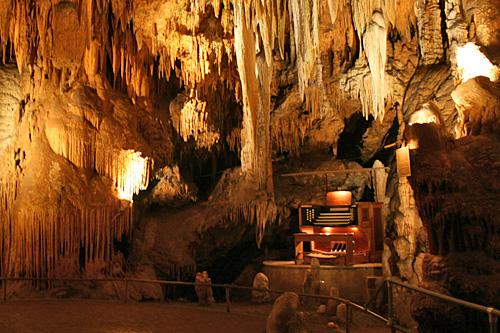 luray_caverns_stalacpipe_organ.jpg