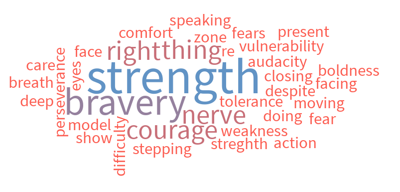 The attendees of our Compassion Workshop, last month in Las Vegas, created this wordle of what courage means to them