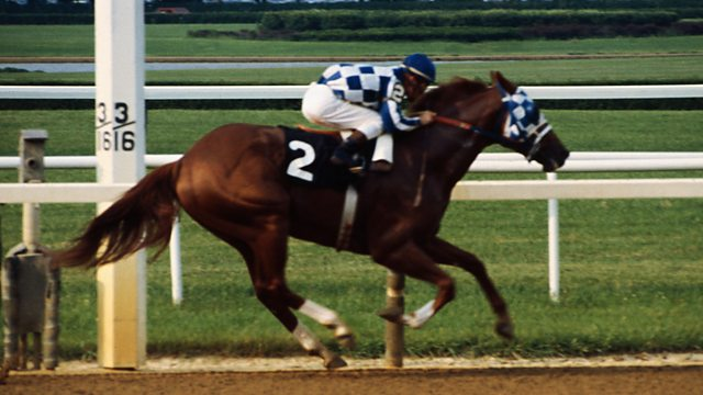 Secretariat - America's Superstar Racehorse - How one of the greatest racehorses of all time won the US Triple Crown in 1973.