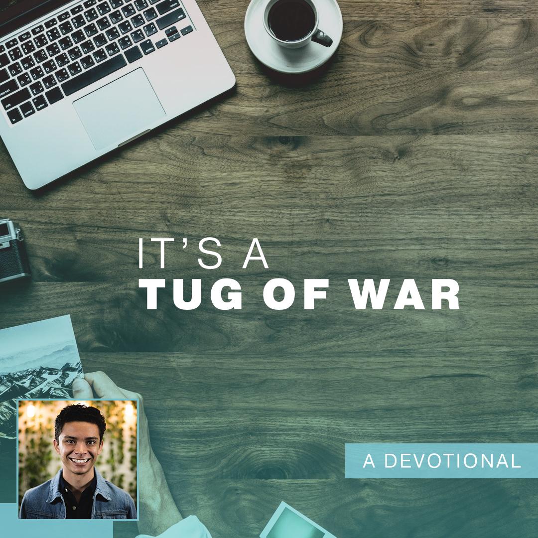 Tug of War.jpg