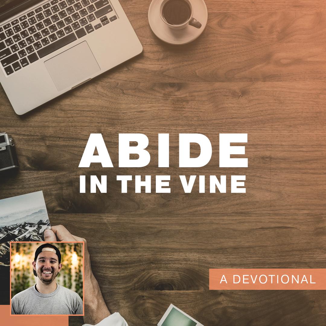 abide in the vine.jpg