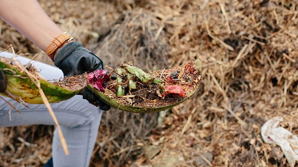 food waste-detroit dirt.jpg