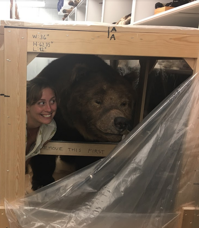 Alexis Mychajliw poses with Monarch, one of our sample bears, at the California Academy of Sciences.
