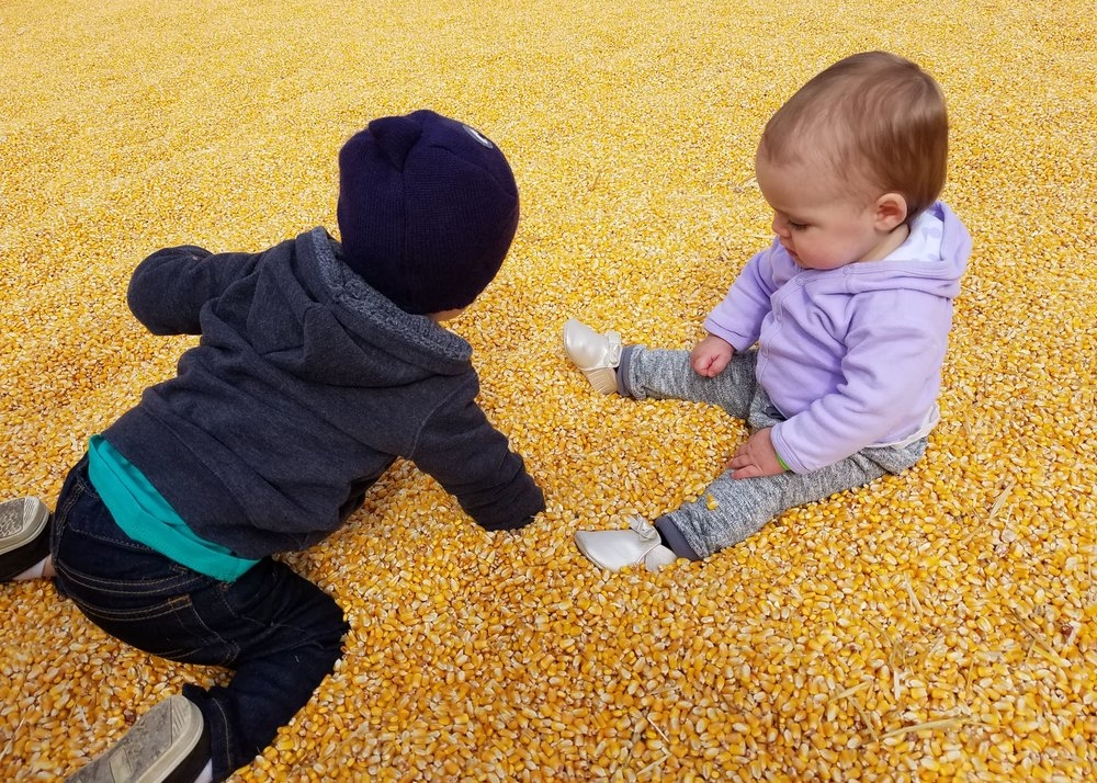 corn pit for toddlers