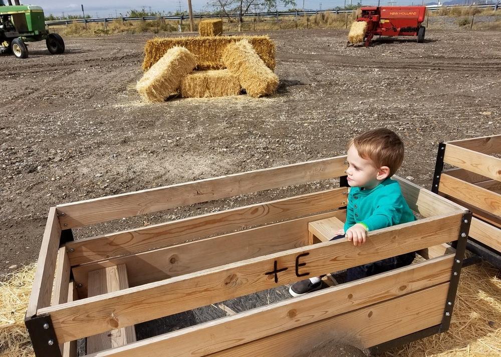 wagon rides davis county