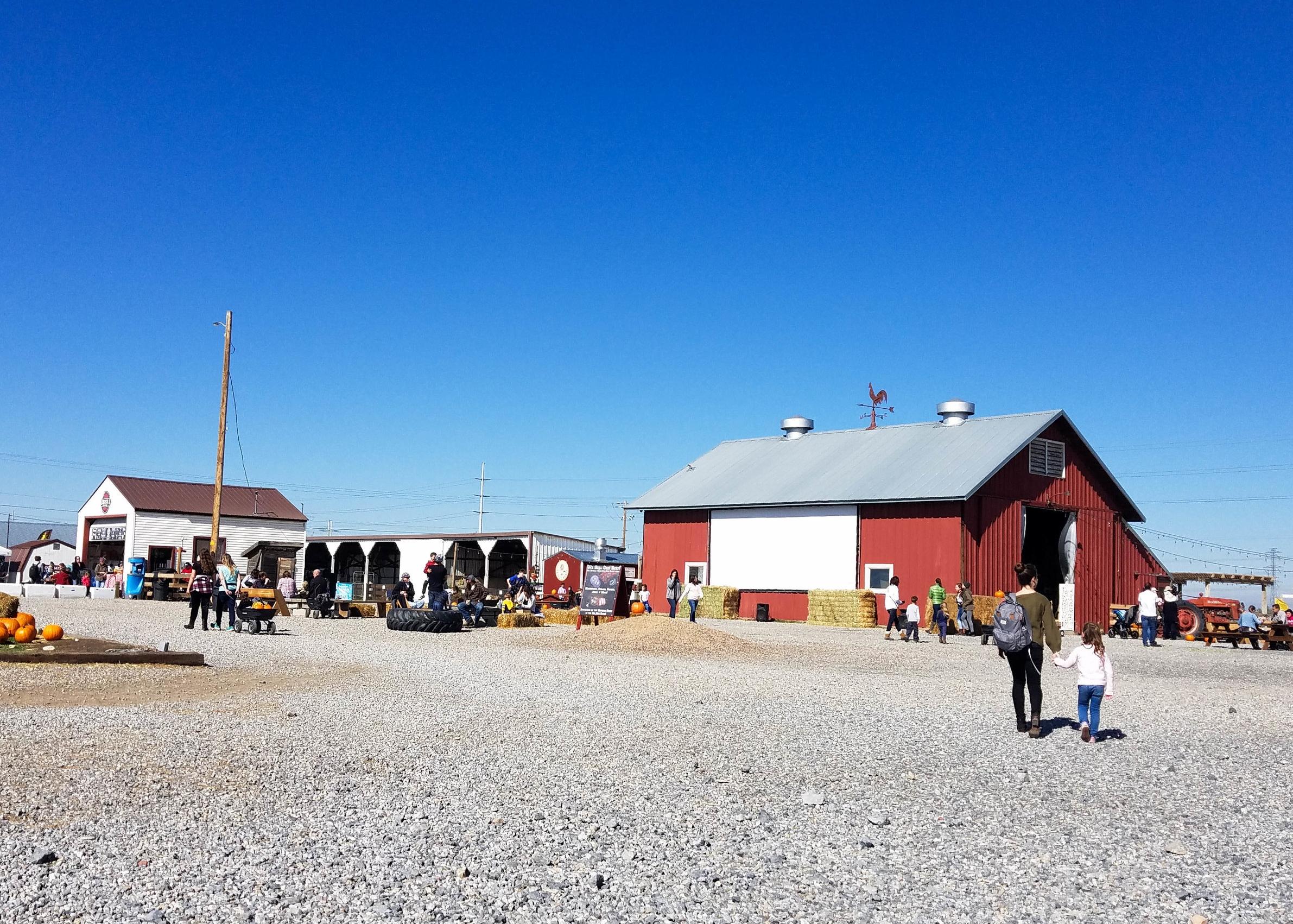 cross e ranch fall festival
