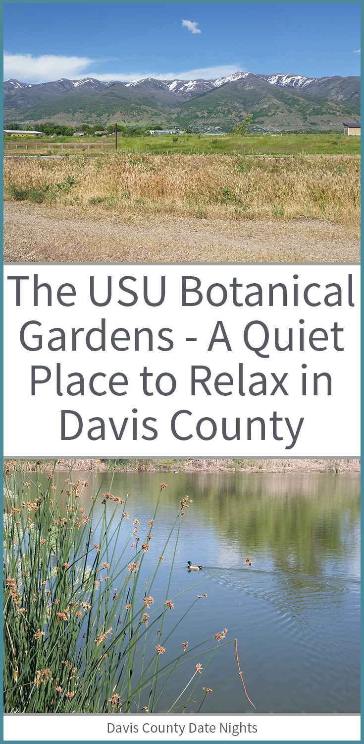 The USU Botanical Gardens are nestled in the heart of Kaysville and are a quiet and beautiful place to escape to.