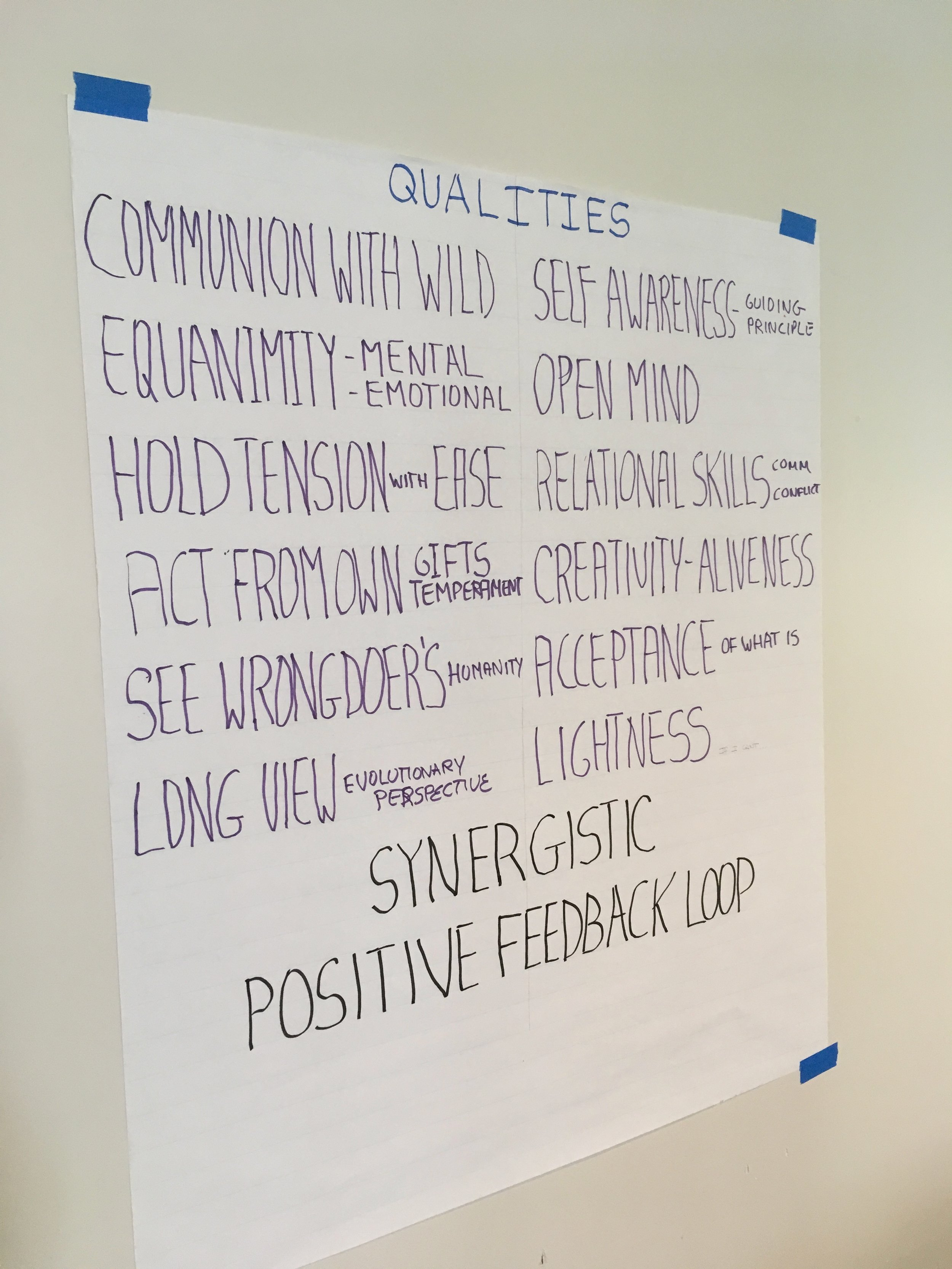 """Some qualities of the Inner Transition posted on the wall during Rebecca Blanco's one-day """"Deep Resilience"""" intensive. Photo by Nils Palsson."""