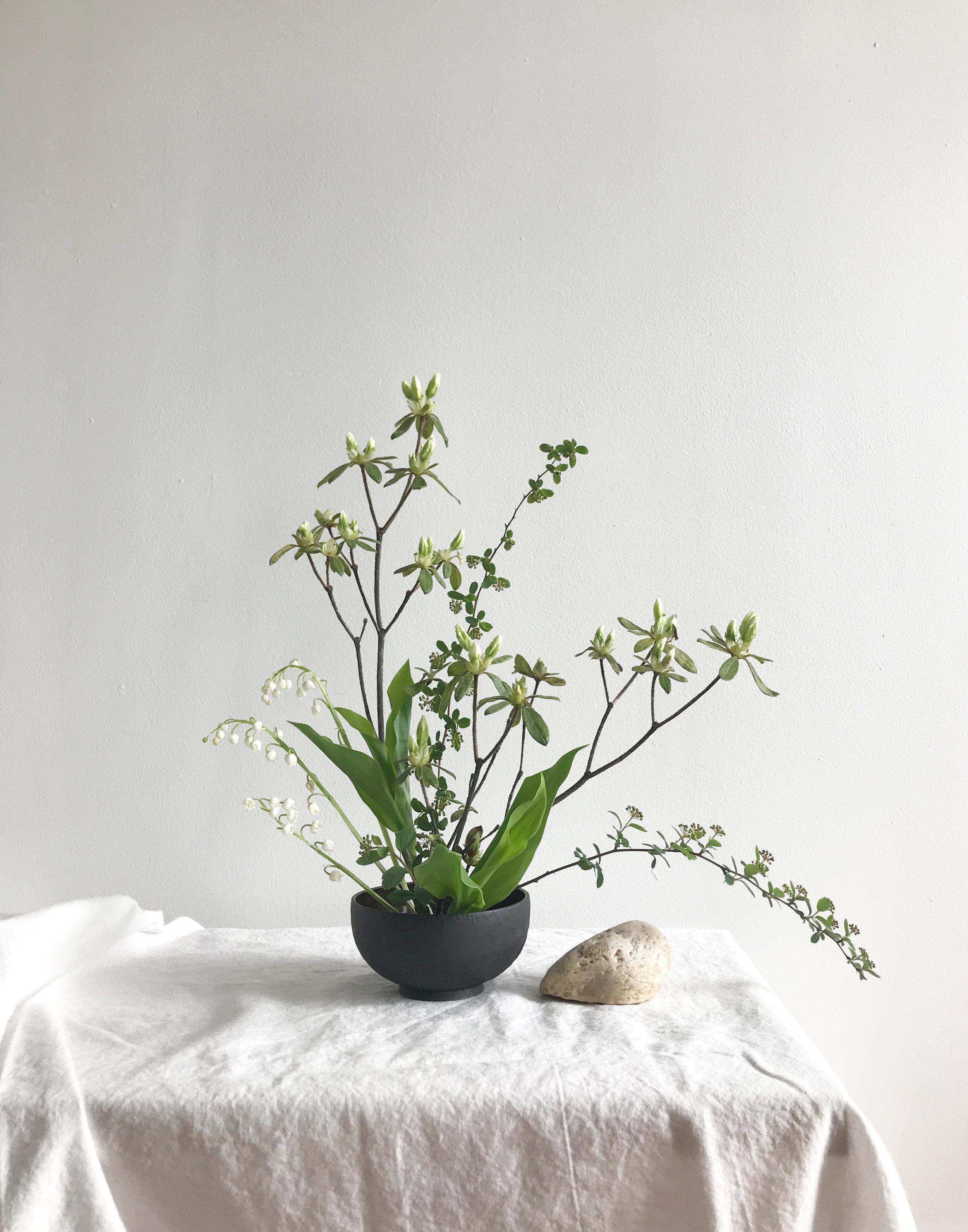 azalea2.jpg