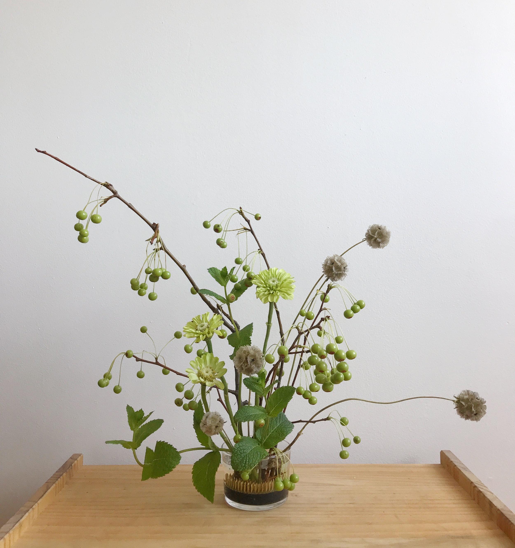 crabapple_flowers_front.jpg