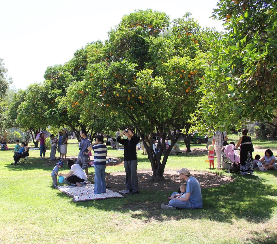 Los Encinos State Historic Park