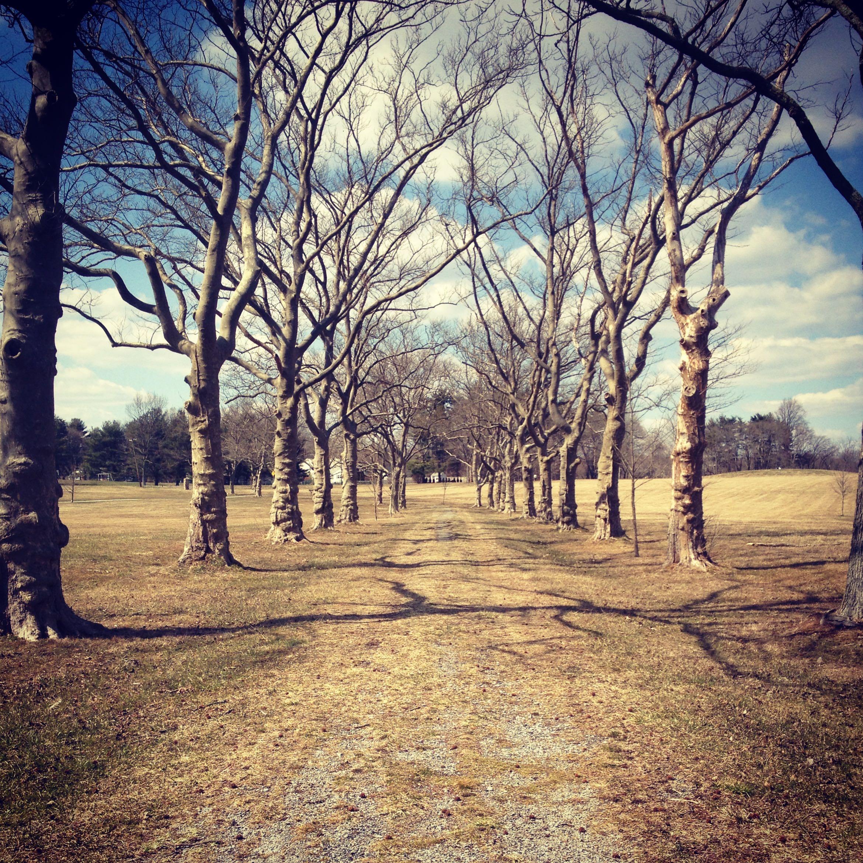 East Goshen Park - Photo Credit Nicole Valentine