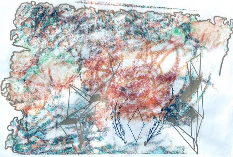 GilaFloralGeo.jpg