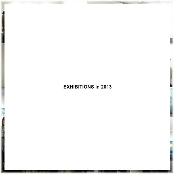 EXHIBITIONS in 2013.jpg