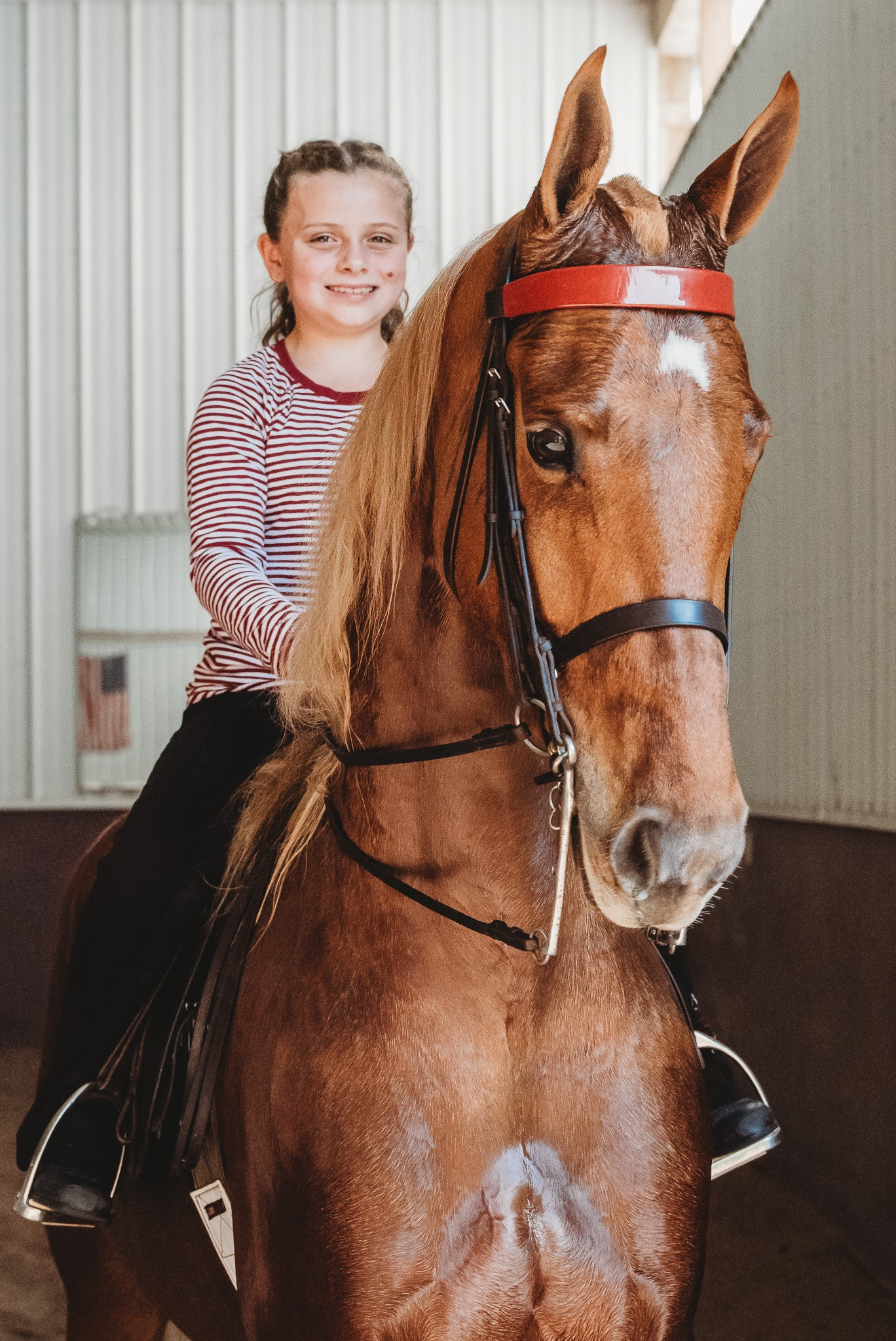 I'm Vegas and Nora Burnett - Congratulations to the Burnett family on the selection of I'm Vegas. Selling Agent: Randy Stoess Stables, Receiving Trainer: Seldom Seen Farm