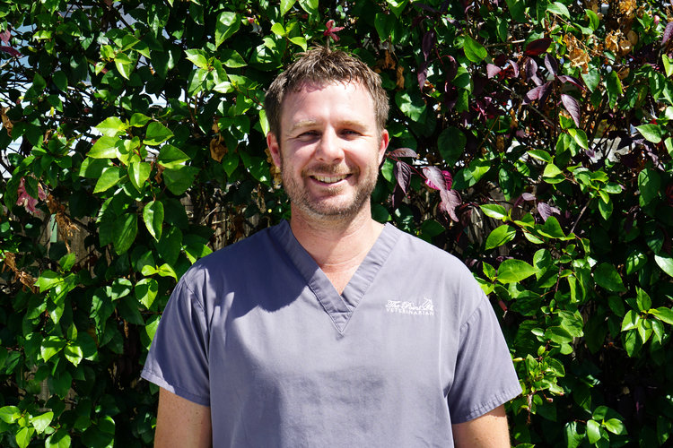 DR JOHN RIGLEY - SENIOR VETERINARIAN After graduating in 2001, Dr John spent his first few years in a busy practice in the UK before returning home to work for a local small animal clinic. It was there his love of all creatures great and small inspired him to begin his own practice in the northern Gold Coast's Paradise Point - and so The Point Vet was born. After over 16 years of dedicating and honing his skills as a leading veterinary surgeon, Dr John has recently graduated with a Diploma in Animal Acupuncture which allows him not only to treat our beloved pets with traditional medicine and surgical options but also gives the clinic the ability to offer a holistic approach to animal health. On the rare occasion he isn't at the clinic, Dr John enjoys mountain-biking and spending time with his wife, his son and his beloved supermutt, Marley.