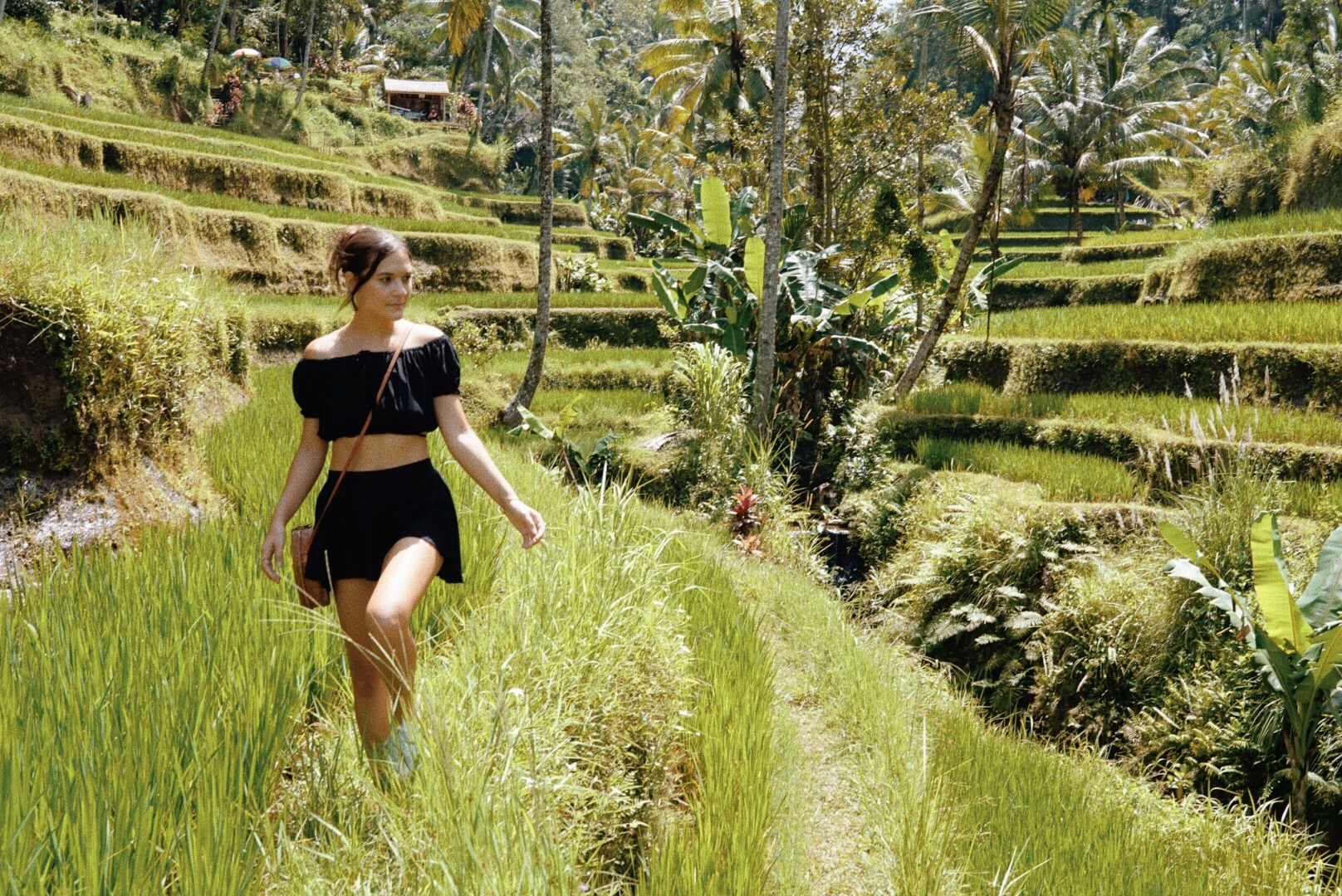 eternally-en-route-rice-fields-ubud