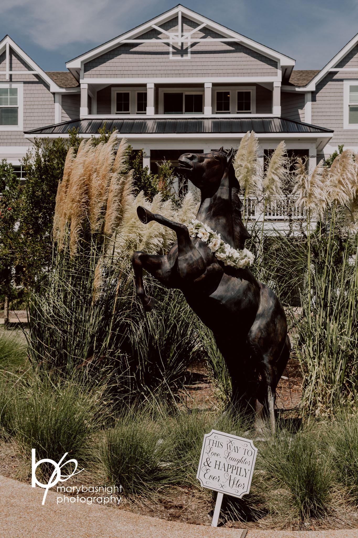 The Black Stallion - Details