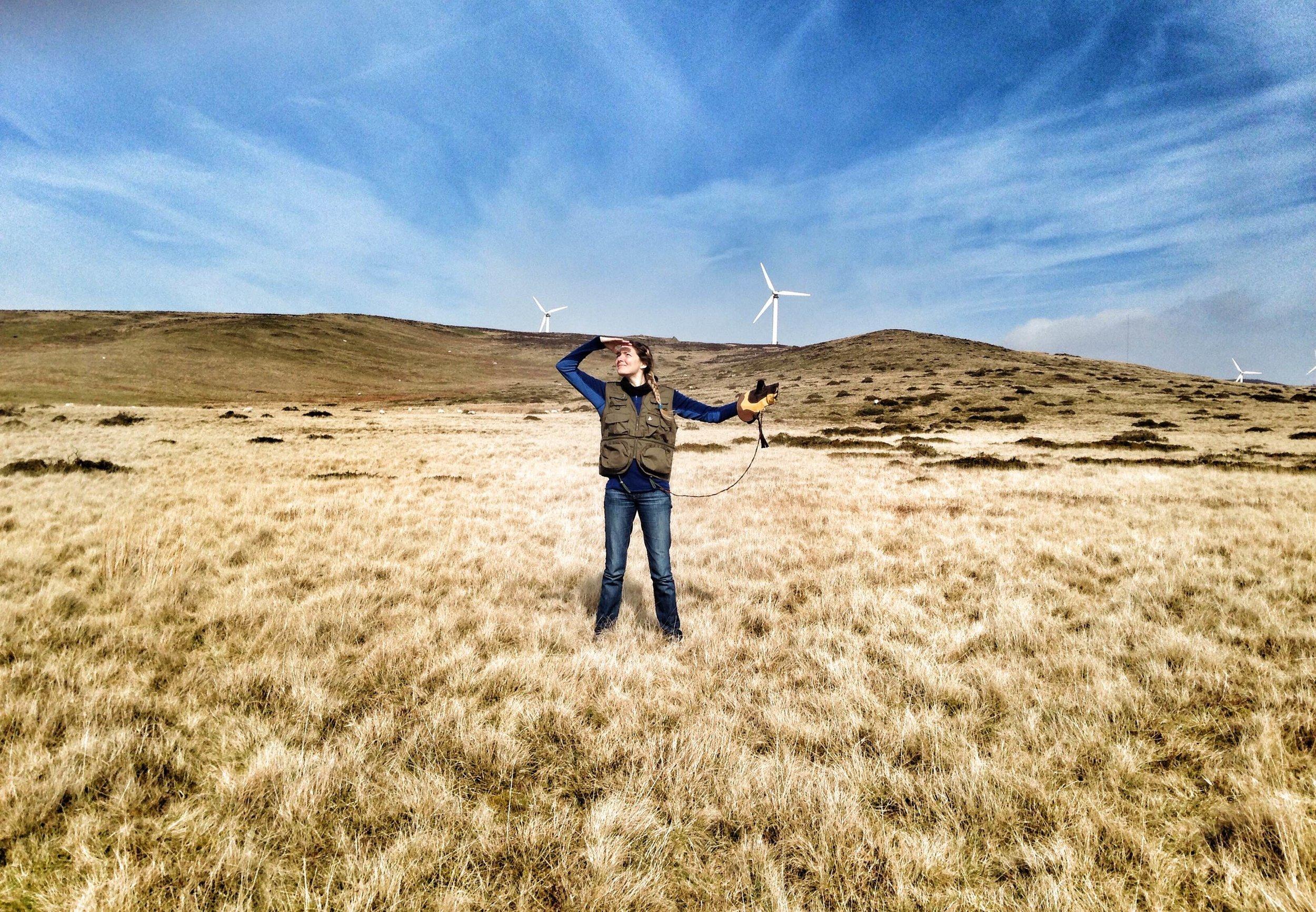 Kirsty Bird - Head Falconer at Cumbria's Top Bird of Prey Centre -