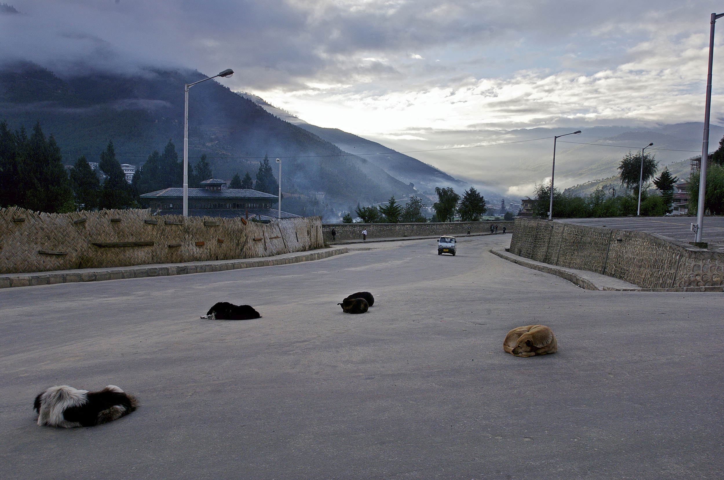 Sleeping stray dogs    in the early morning, 6:30 a.m. Finally the dogs lay down to rest after having been up barking all night. 01.10.07,Thimphu